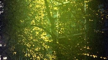 http://www.asadesouzajones.co.uk/files/gimgs/th-1_Untitled-110_v2.jpg