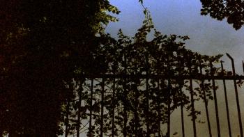 http://www.asadesouzajones.co.uk/files/gimgs/th-1_Untitled-16_v3.jpg