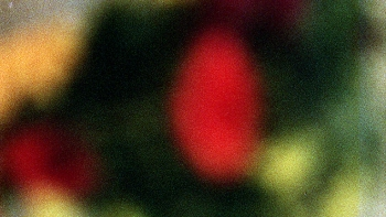 http://www.asadesouzajones.co.uk/files/gimgs/th-1_Untitled-5_v2.jpg